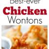 Chicken wontons – ea