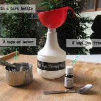 Bye-Bye Mites & Mold – All-Natural Mites & Mold Killer Recipe | littlegreendot.com