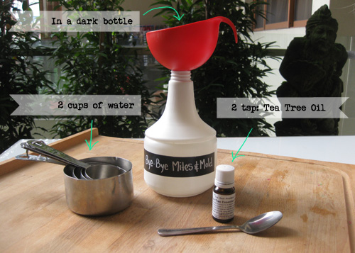 How to make an all natural mites & mould killer