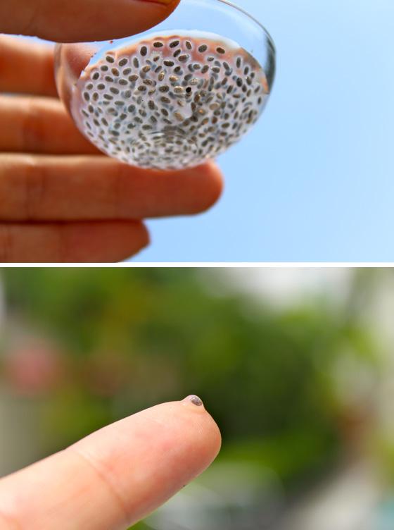 Chia seeds gel