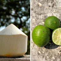Coconut Chia Fresca Recipe | littlegreendot.com