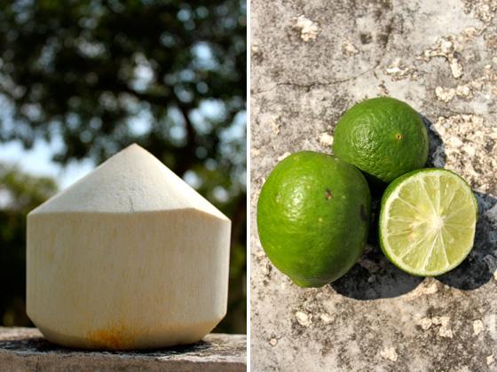 Coconut chia fresca ingredients