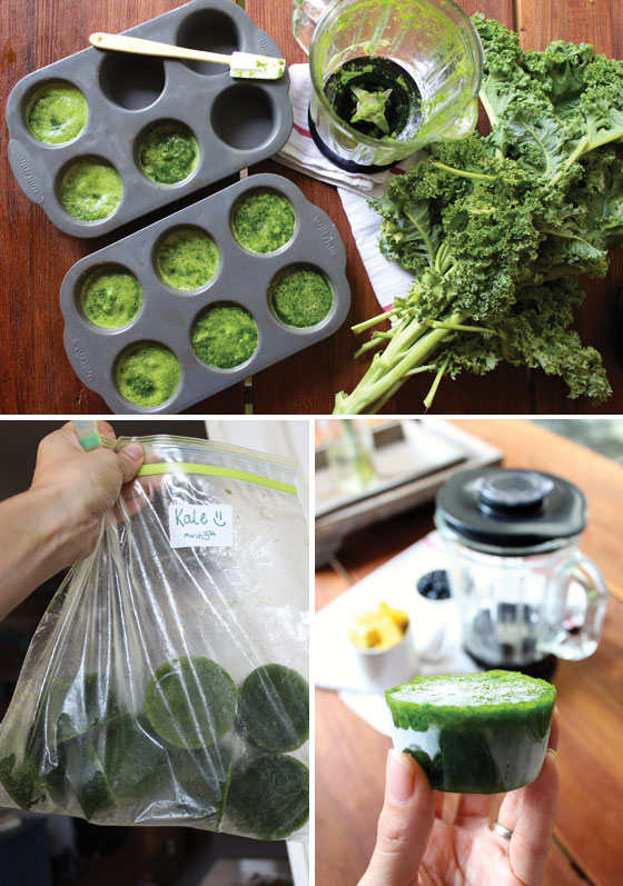 Blend & Freeze Kale