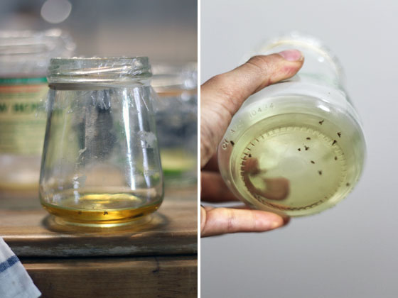 jar-of-vinegar