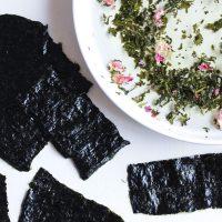 DIY seaweed peel off mask | littlegreendot.com