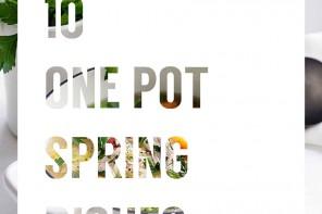SpringOnePotDishes